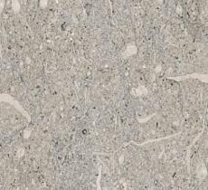 Камень Виченца Грей